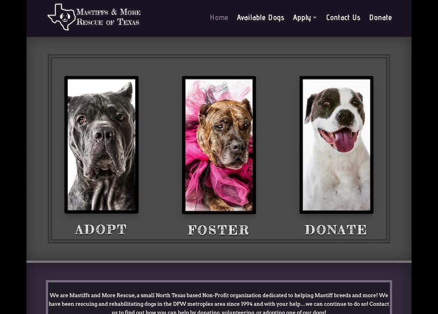 Mastiffs & More Rescue of Texas